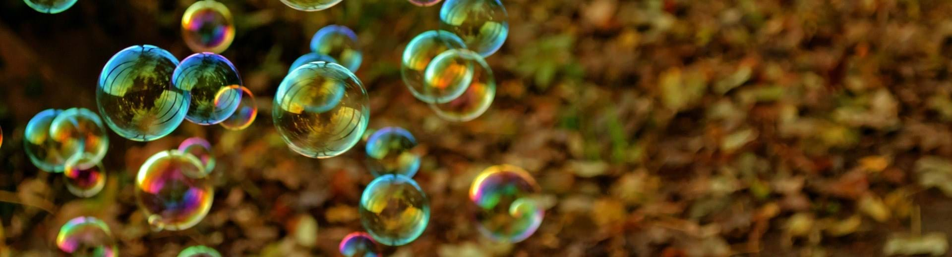 Lots of soap bubbles, and the ground is covered in autumn leaves