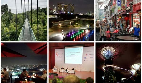 Composite image of attractions in Singapore